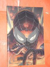 AMAZING SPIDERMAN -N°12 -VARIANT COVERS  FX-simone bianchi -PANINI -UOMO RAGNO