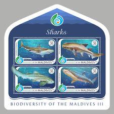 Maldives 2018  fauna fishes sharks  S201901