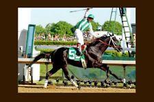 WAR EMBLEM - USA 2002 Kentucky Derby winner modern Digital Photo Postcard