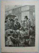 Original-Holzschnitte (1800-1899) aus Europa mit Zoologie-Motiv