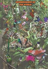 Kolibry - dekoracyjny plakat A2 + plakat GRATIS + darmowa wysyłka!
