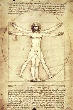 Vitruvian Man, c. 1492 Poster Print by Leonardo da Vinci, 24x36