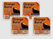 4 Heath Orange Burst SONGBIRD SUET Blended Seed & Orange Flavor Bird ALL SEASON!