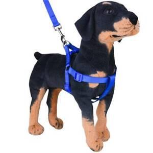 Fashion Pet Dog Harness Dog Leash Vest Walking Running Pet Accessories LL