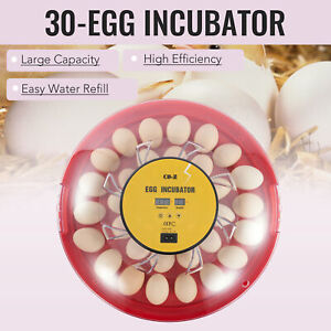 Automatic Egg Incubator Poultry Hatching Machine for 30 Chicken Eggs and More