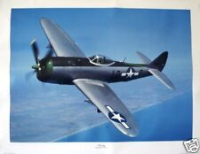 The Jug / Republic P-47D / WWII Fighter Plane