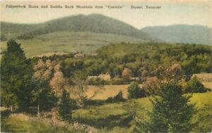 Dorset Vermont Fahnestock Home Saddle Back Hand Colored Postcard 21-2011