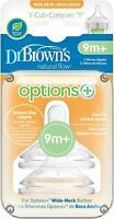 Dr Brown's Options+ Y Cut Teats - 2019 Design