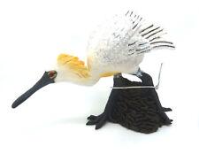 V15) NUOVO COLLECTA (88397) Nero-faccia spatola Löffler Uccelli Figure