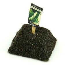 Dolls House Miniature Pole Beans Seed Packet With A Stick