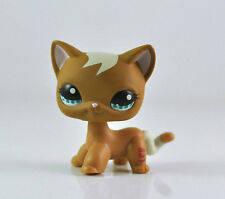 Brown Kitten Cat Kitty Hasbro Littlest Pet Shop Short Hair LPS Toy Animals #1170