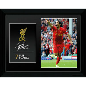 LUIS SUAREZ LIVERPOOL FC FRAMED PICTURE 16' x 20' OFFICIALLY LICENSED