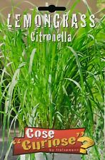 Semi / Seeds LEMONGRASS Citronella