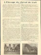 70 L'ELEVAGE DU CHEVAL DE TRAIT ARTICLE DE PRESSE FRISSON VETERINAIRE 1929