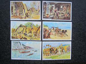 Erdal-Bildreihen Vorzeit III. (**TOP**) 6 Sammelbilder Erdal Kwak Serie Nr. 115