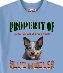Dog T Shirt - Property of Spoiled Rotten Blue Heeler --  Cat T Shirt Available