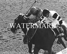 AFFIRMED beats ALYDAR 1978 Belmont Stakes Winner Horse Racing 8 x 10 Photo Race