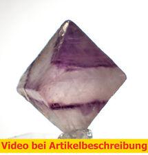 6537 polychromer Fluoritspaltoktaeder ca2,6cm Fluorite Octahedron diamond MOVIE