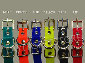 """Stay + Play 3/4""""  Roller Buckle Receiver Strap Wireless Collar"""