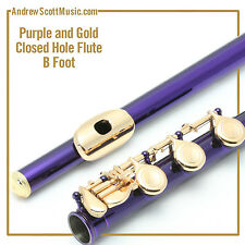 Flute - Purple and Gold  with B Footjoint - Masterpiece - 12 Month Warranty