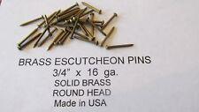 """ESCUTCHEON PINS SOLID BRASS  300 pcs. 3/4"""" X 16 ga. U.S.A. WOOD / LEATHER new"""