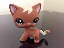 Littlest Pet Shop Cat # 1170 Cat Mocho Brown Tan Curls Short Hair Blue Eyes