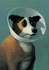 Michael Sowa Dog with Cone Print Poster Novelty Animals Fantasy Dogs Animals
