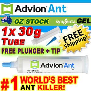 FRESH GENUINE Advion Ant Gel Syngenta 1x 30g Ant Killer Bait FREE Plunger & Tip!