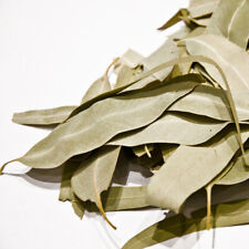 Cretan Eucalyptus dried leaves 50gr -Treat BRONCHITIS,PNEUMONIA,ASTHMA