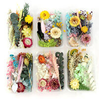1Box Random Real Dried Flower Dry Plants DIY Aromatherapy Candle Epoxy Resin YK