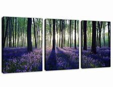 Canvas Wall Art Purple Lavender in Sunshine Forest Prints on Canvas Framed Ready