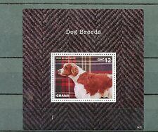 Ghana 2014 MNH Dog Breeds 1v S/S Dogs Pets Welsh Springer Spaniel