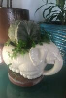 Vintage Ceramic Elephant  White MCM Pottery Planted w/ Bishop's Cap Cactus