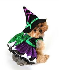Anit Accessories Scary Witch Dog Costume ~  S ~ Halloween