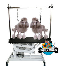 Professional Z-Lift Twin Arm Hydraulic Dog Grooming Table Salon Vet Equipment