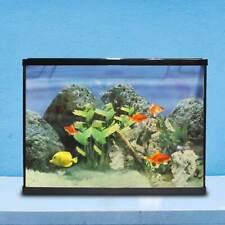 Acquario Completo Kit Con Filtro Pompa Vasca 18 Litri Pesci Sassolini 18LT