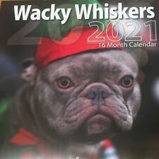 New 2021 Dogs & Cats Wall Calendar, 16 Month- Wacky Wiskers, Cute!- 2021