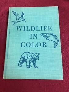 WILDLIFE IN COLOR HC Book by Roger Tory Peterson 1951
