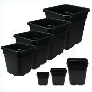 Square Wilma Pots Grow Hard Wearing Heavy Duty Black Plastic 2L/6L/11L/18L/25L