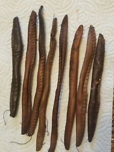 7 Antique Victorian  Leathered Covered Wire Hair Curlers with Thread Stitching