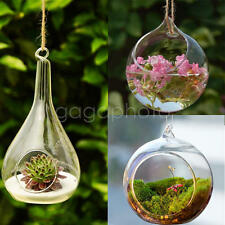 Hanging Glass Ball Vase Flower Plant Pot Terrarium Container Decor