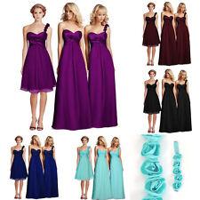 Chiffon Long Regular Size TFNC Dresses for Women