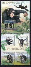 BURUNDI 2012 - LES CHIMPANZES PRIMATES AFEN APES WILD ANIMALS FAUNA STAMPS MNH**