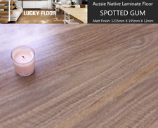 12mm Spotted Gum Laminate Flooring Floating Timber  Floor boards Click DIY