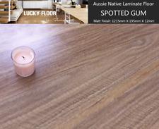 12mm Spotted Gum Laminate Flooring Floating Timber  Floor boards Click DIY