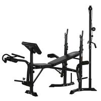 Home Fitness Dumbbell Weight Bench Barbell Lifting, Folding Adjustable Bench US