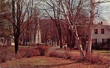 Grafton Vermont~Village Street~Red Autumn Leaves 1950s Postcard