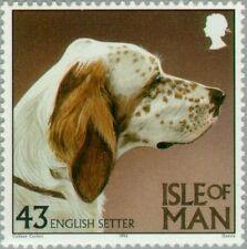 Isle Of Man - 1996 - English Setter (Canis lupus familiaris) - Mnh Stamp