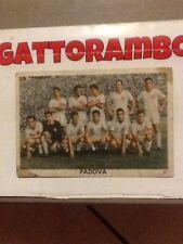 Figurina Cartonata Squadra Padova Rarissima-Ed.Edj Calciocampioni