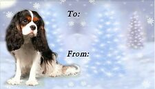 Cavalier King Charles Christmas Labels-Starprint No 5